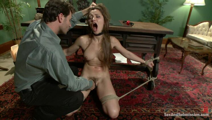 Private Meetings: The Submission of Dani Daniels